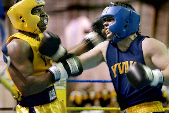Boxers Combatants Men Boxing Pugilism Males Glove