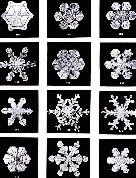 Crystals Minerals Snow Snowflake Ice Crystal Frost