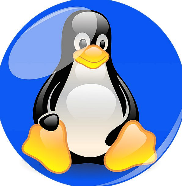 Penguin Mascot Symbol Linux Blue Azure Cartoon Cha
