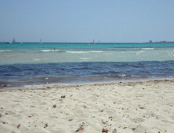 Sea Marine Vacation Seashore Travel Holiday Break