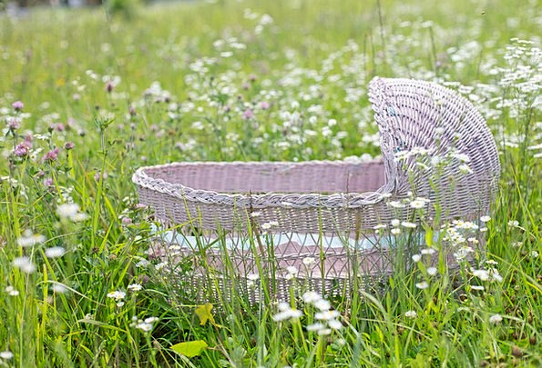 Bassinet Flushed Spring Coil Pink Wild Flowers Flo