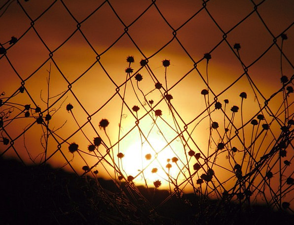 Sunset Sundown Vacation Carroty Travel Sun Orange
