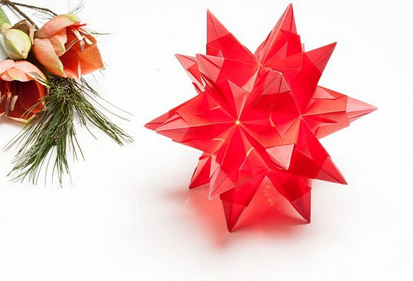 Poinsettia Art Of Paper Folding Origami Amaryllis Fold Crinkle