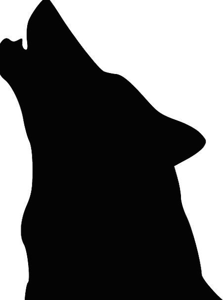 Wolf Casanova Skull Silhouette Outline Head Beast