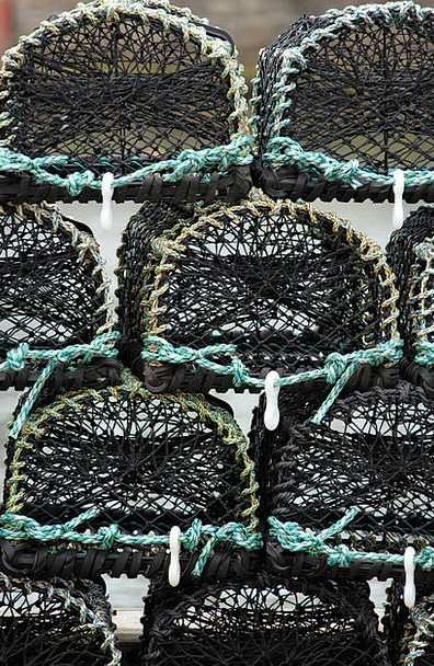 Basket Bag Craft No-win situation Industry Crab Ca