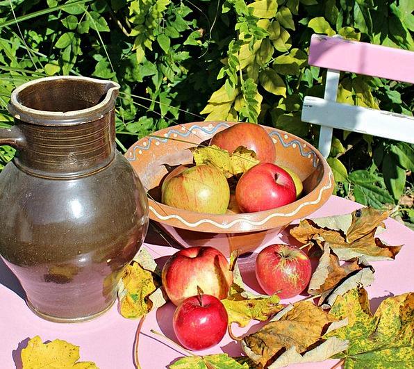Apple Drink Plot Food Garden Table Garden Fruits T