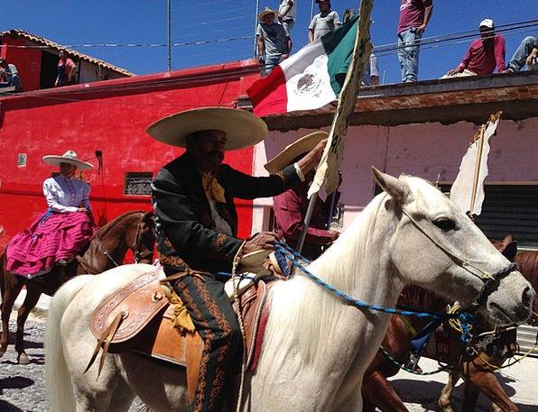 Mexico Rider Mexican Flag Horseman Mammal Design P
