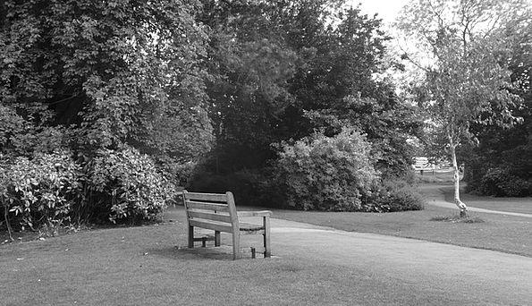 Bench Seat Textures Walkway Backgrounds Park Commo
