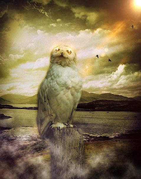 Spiritual Nature Spiritual Nature Sky Blue