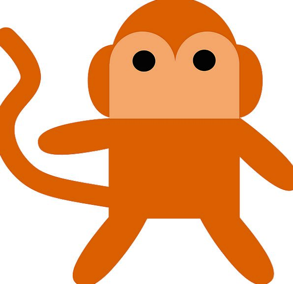 Monkey Ape Carroty Mammal Creature Orange Captivit