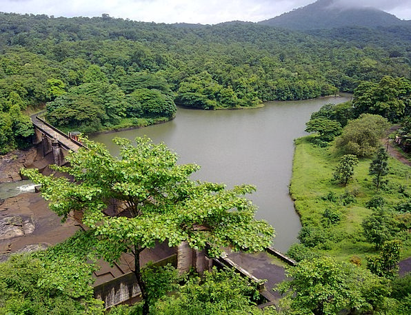 Kerala Stream India River Ottackal Bridge Subtropi