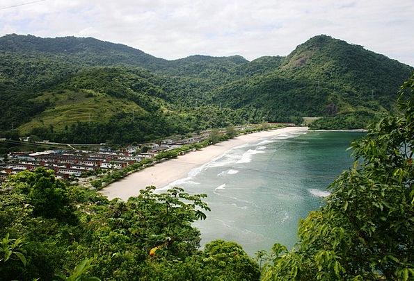 Mar Deface Atlantic Forest Tropical Vegetation Vis