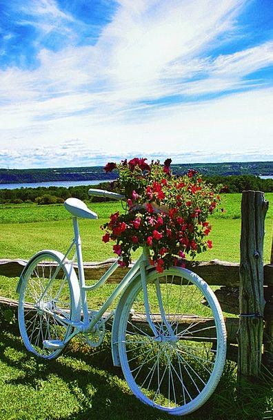Bike Motorbike Landscapes Plants Nature Fields Are