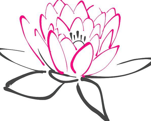 Water Lily Floret Pink Flushed Flower Lotus Free V