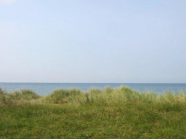Dune Bank Baltic Sea Dune Grass Sea Marine