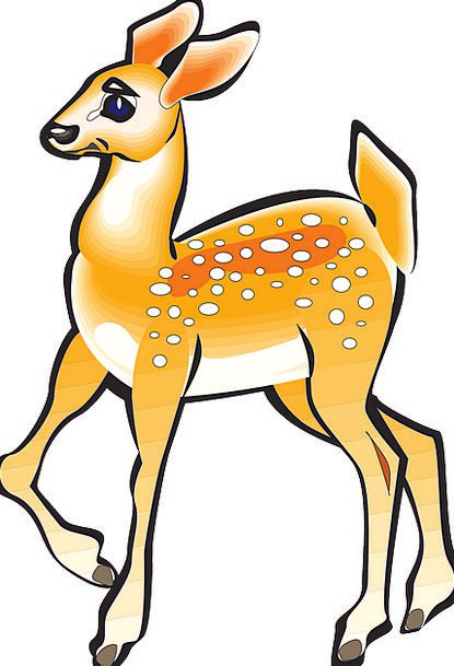 Fawn Brown Physical Deer Animal Female Nature Coun