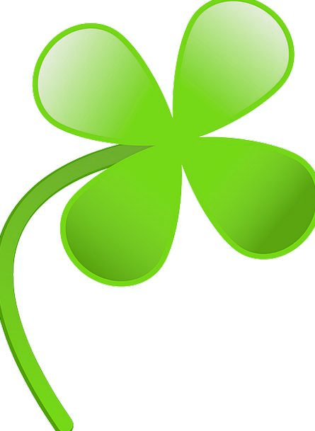 Green Lime Foliage Shamrock Leaf Clover Irish Four