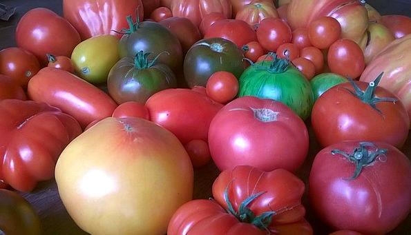 Tomatoes Drink Potatoes Food Food Nourishment Vege