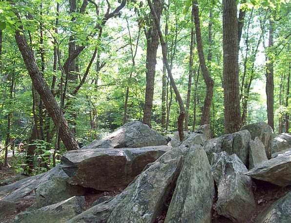 Rocks Pillars Landscapes Woodland Nature Stones Gr