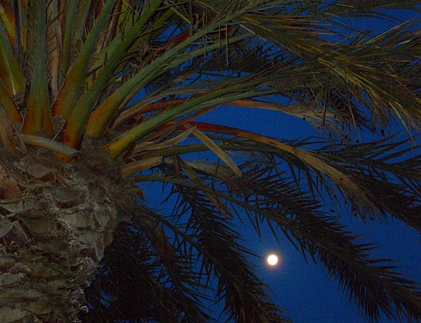 Evening Twilight Nightly Abendstimmung Night Moon