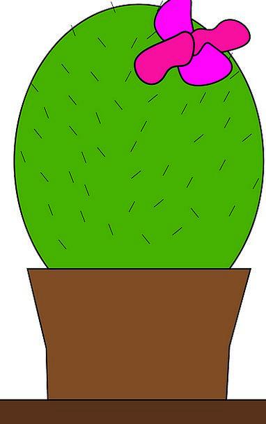 Cactus Landscapes Vegetable Nature Pot Vessel Plan