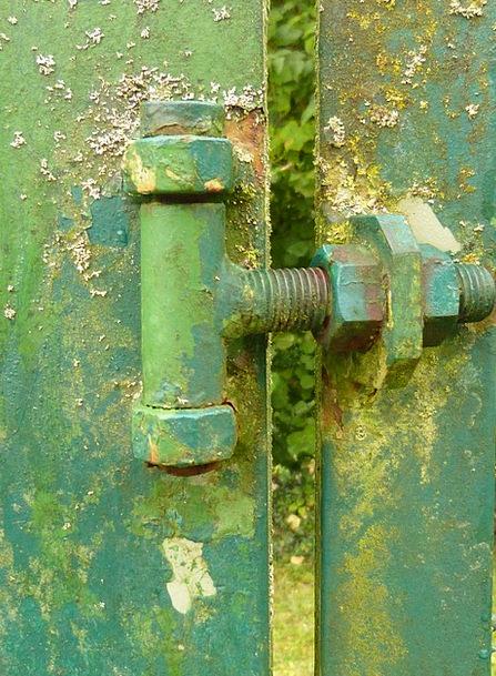 Screw Bolt Lime Moss Green Lichen Old Steel Weathe