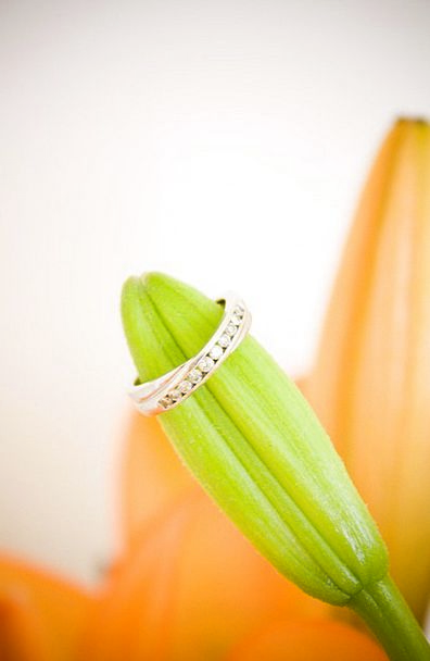 Engagement Appointment Circle Wedding Bridal Ring