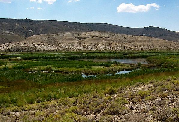 Water Aquatic Reward Valley Vale Desert Oasis Retr