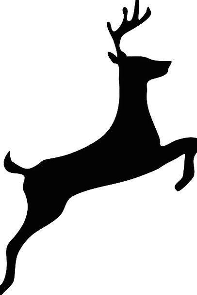 Deer Antler Horn Stag Wildlife Black Dark Mammal J