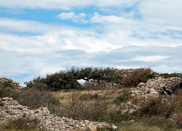 Island Of Rab Landscapes Nature Landscape Scenery