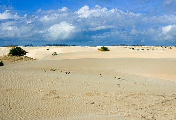 Desert Reward Landscapes Shingle Nature Boa Vista