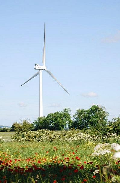 Wind Breeze Farmland Country Turbines Environmenta