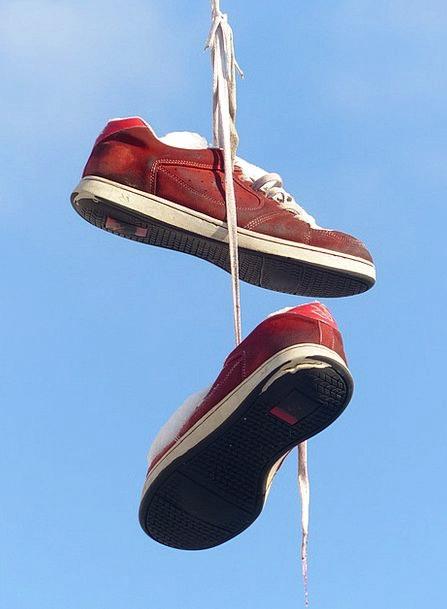 Shoes Be contingent Leash Lead Depend Sports Shoes