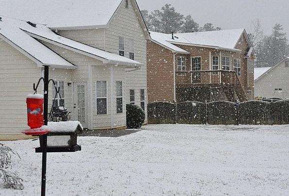 Snow Snowflake Diurnal Georgia Day Back Spinal Yar