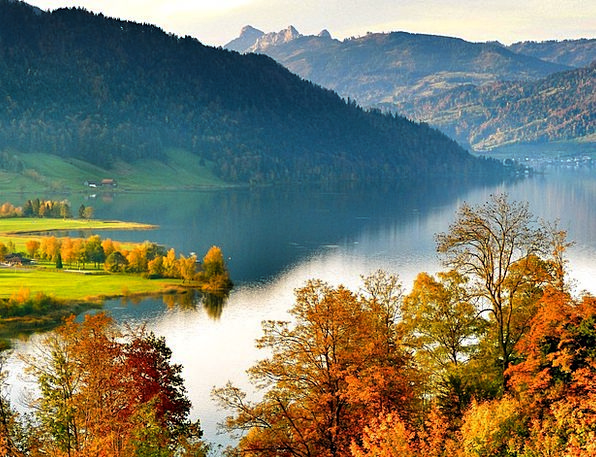 See Understand Landscapes Scenery Nature Autumn Fa