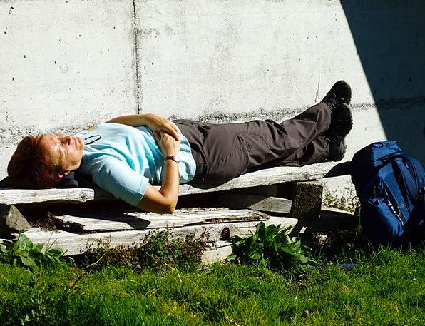 Wanderin Break Sunbathing Basking Rest Enjoy Like