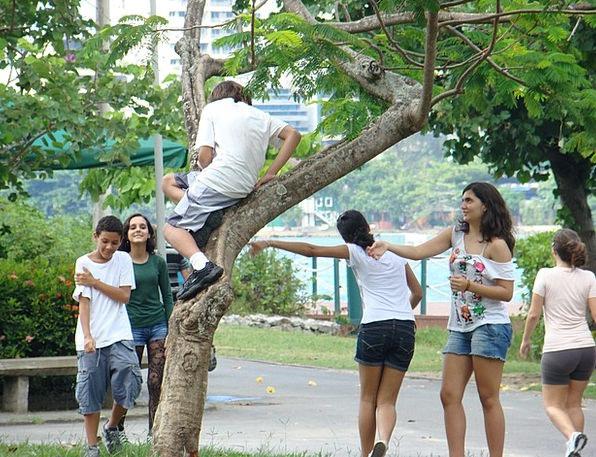 Youth Childhood Park Common Rio De Janeiro Joke Wi