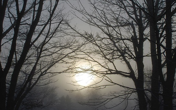 Winter Season Foggy Unclear Mist Haze Misty Sunris