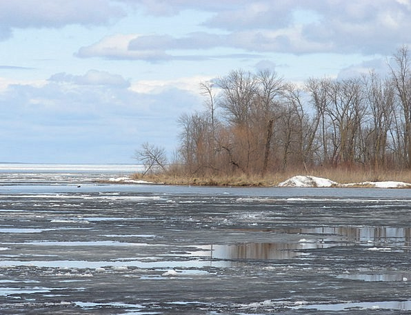 Ice Frost Landscapes Freshwater Nature Mille Lake