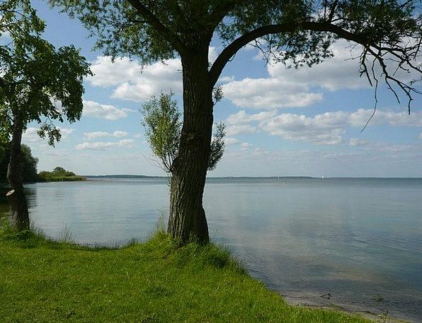 Summer Straw-hat Landscapes Understand Nature Natu