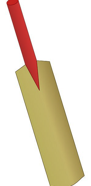 Bat Racket Wood Timber Cricket Batting Tool Instru