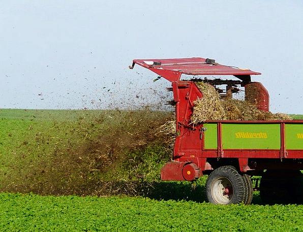 Fertilize Inseminate Field Arena Crap Cultivation