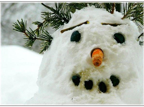 Snow Man Season Snow Snowflake Winter Carrot White
