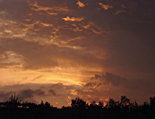 Sunset Sundown Vacation Roseate Travel Evening Col