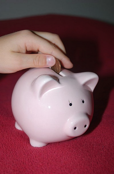Piggy Bank Finance Investments Business Pig Glutto