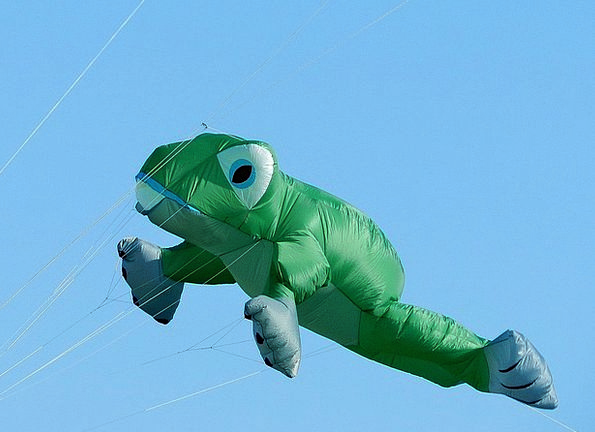 Balloon Inflatable Frog Dragons Fly Hover Sky Gree