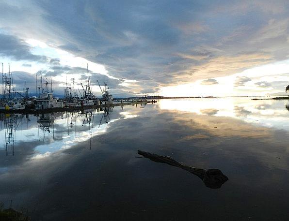 Comox Landscapes Harbor Nature Sunrise Dawn Marina