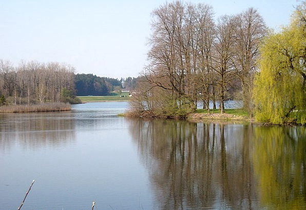 Monastery Seeon Upper Bavaria Little Lake Traunreu