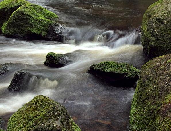 River Stream Stones Gravels Moss