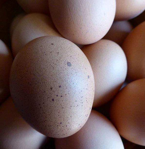 Egg Ovum Drink Food Food Nourishment Hen'S Egg Nut